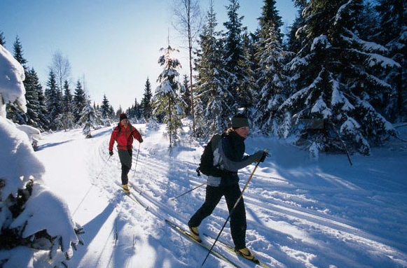 Cross Country Skiing in Waueksha County • The Lake Country Mom