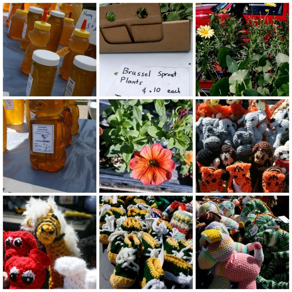 Delafield Farmers' Market • The Lake Country Mom