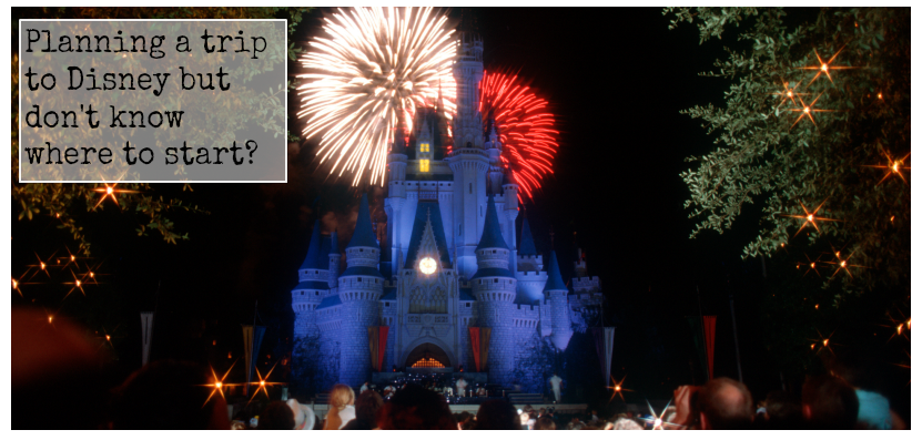 Planning a trip to Disney but don't know where to start? | Local Travel Planning!