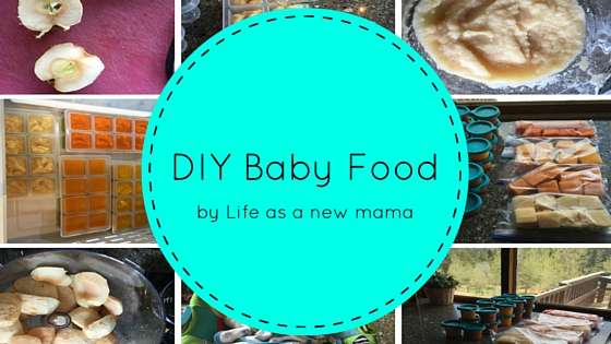 DIY Baby Food | Guest Blogger Post