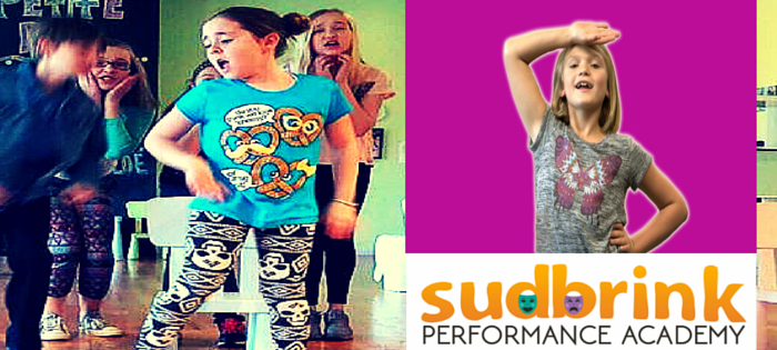 Sudbrink Performance Academy • NOW ENROLLING!